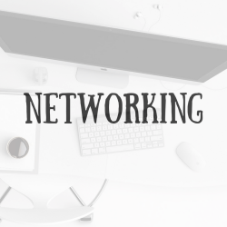 The Savvy Solopreneur's Guide To Networking