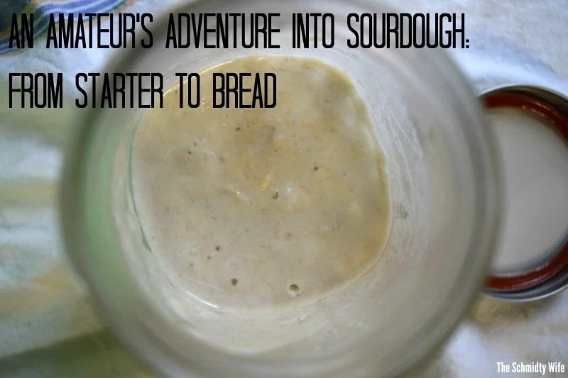 An Amateur's Adventure into Sourdough: From Starter to Bread