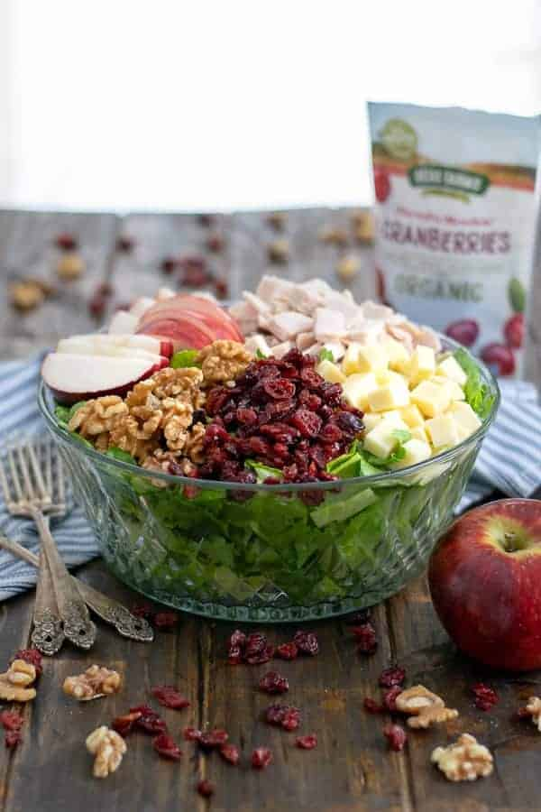 Apple Cranberry Salad with Turkey and Apple Cider Vinaigrette made with delicious Decas Farm Organic Dried Cranberries