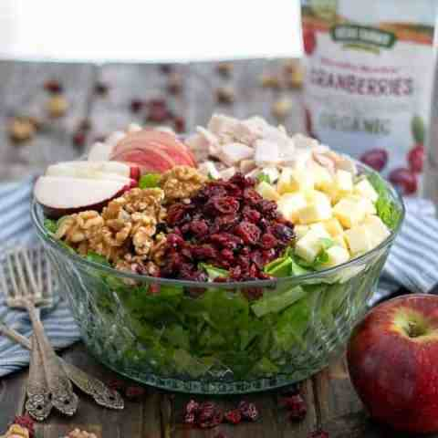 Apple Cranberry Salad with Turkey and Apple Cider Vinaigrette Recipe
