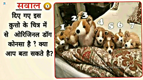 hindi puzzles for whatsapp with answers, puzzles for whatsapp group with answers in hindi, maths puzzles for whatsapp with answers in hindi, puzzle in hindi, hindi paheliyan, hindi puzzle, hindi paheliyan with answer 2018, hard paheliyan in hindi with answer 2018, new hindi paheliyan with answer 2018, funny paheliyan in hindi with answer 2018, paheliyan in hindi with answer 2018 pdf, hindi paheliyan with answer, riddles, paheliyan in hindi with answer 2018, paheliyan in hindi, paheliyan in hindi with answer,funny hindi sawal jawab