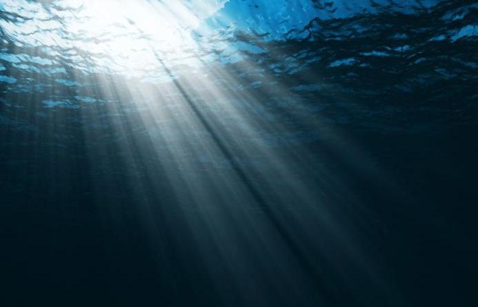 Darkness in the Depths of the Ocean