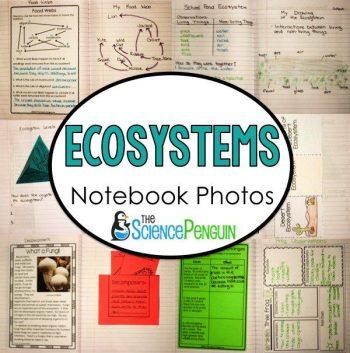 Ecosystems Ideas