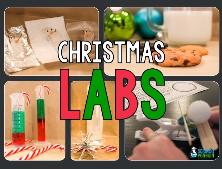 My Favorite Resource I've Ever Made: Christmas Labs