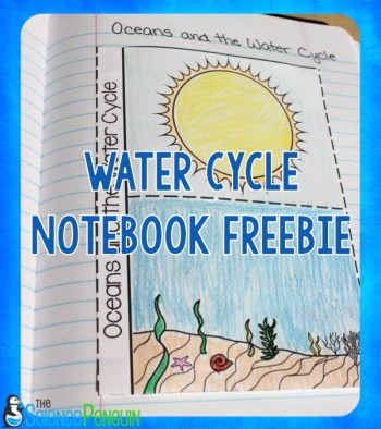 Water Cycle Science Notebook