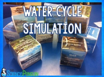 Water Cycle Dice Simulation
