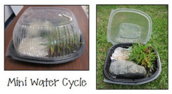 mini water cycle