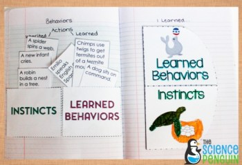 Instincts vs. Learned Behaviors