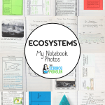 Ecosystems Science Notebook Photos