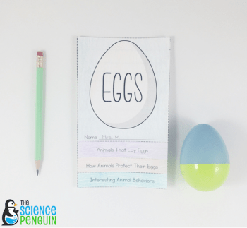 Ideas and a free flapbook to use with Egg: Nature's Perfect Package. This activity is awesome for a life cycles unit or an Easter theme.