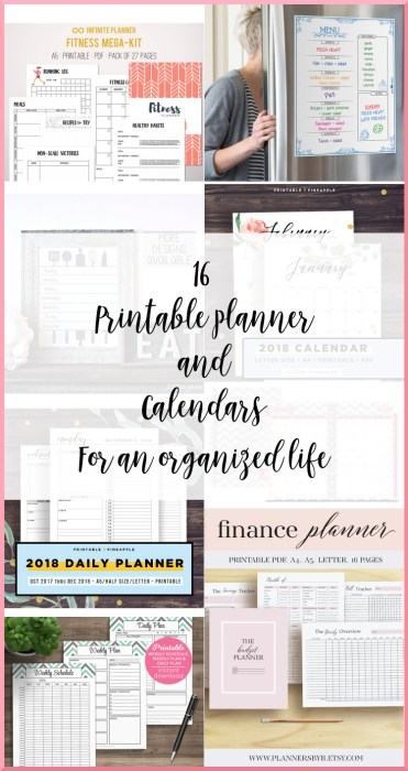 16 Printable Planner and Calendars Pinterest Picture