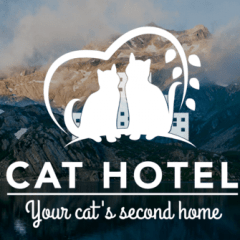 Scratching Post Cat Hotel