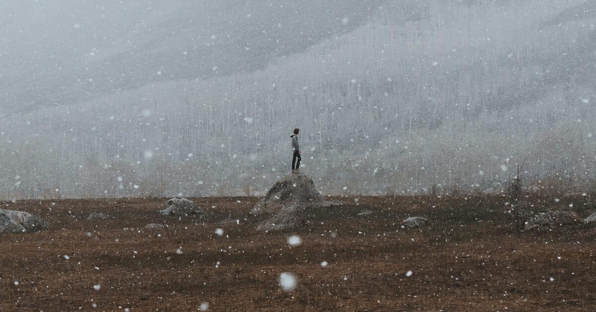 The Weird Side of Sundance: Writing Midnight Movies