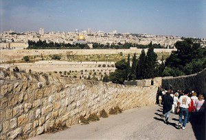 Walking down the Mount of Olives towards the Garden of Gethsemane