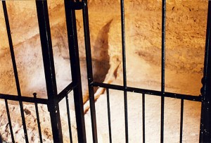 Inside Messiah's Empty Tomb in Jerusalem