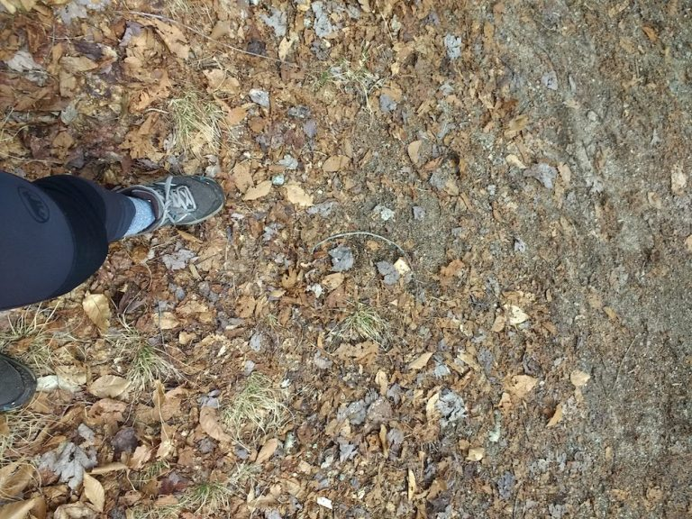 A Good Rubber Sole or How I Learned To Run on Trails