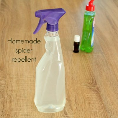 Spider repellent DIY For Home & Garden
