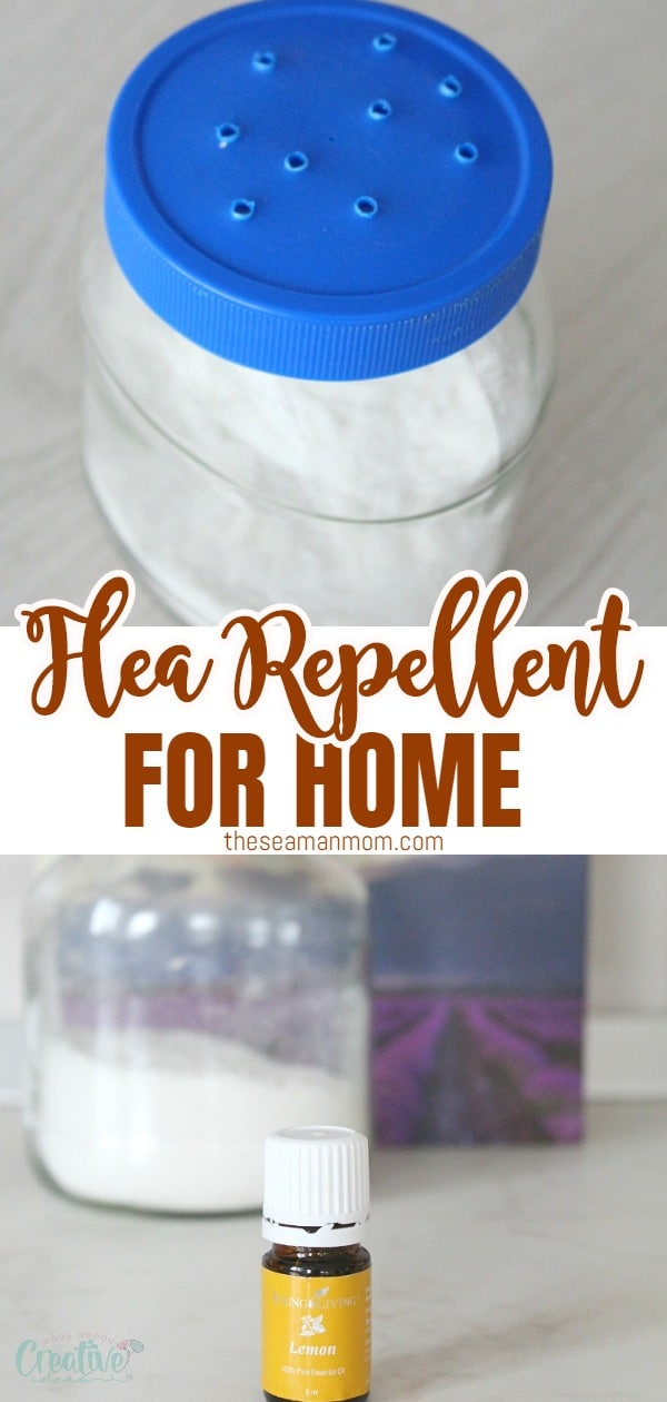 Get rid of those nasty fleas the healthy, natural way with this flea repellent for home! Making a homemade flea killer for your home is so easy and convenient, using just a few simple, inexpensive ingredients you most likely have on hand!  via @petroneagu