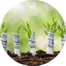 planting_money_saplings_circle