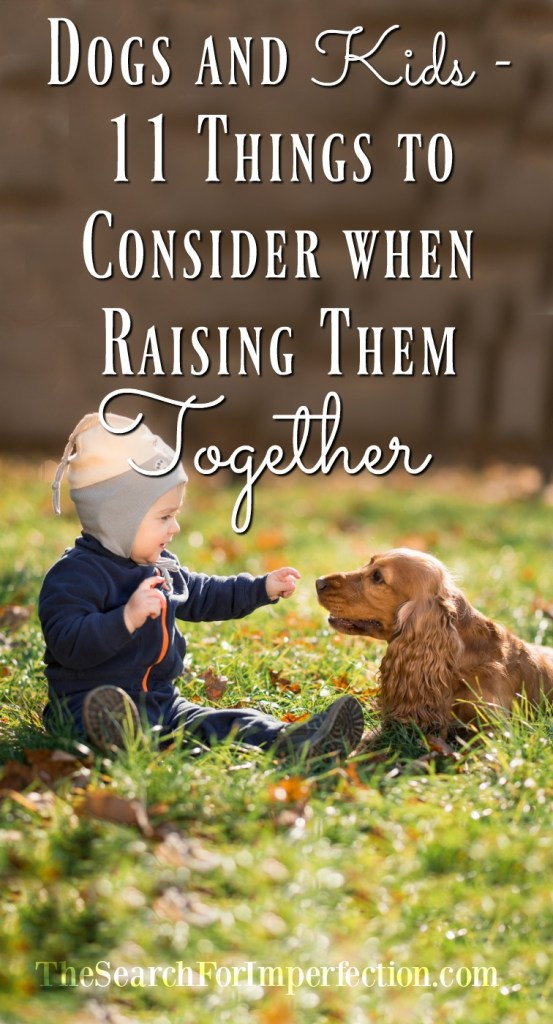 11 things to consider when raising dogs and kids together.