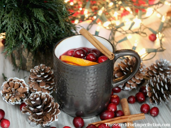 Warm Winter Rum Punch
