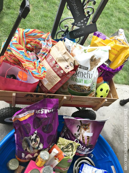 Animal Shelter Donation Party