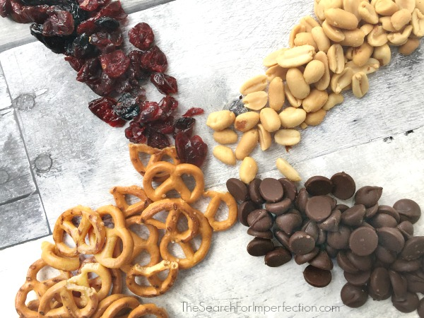 Pretzel Berry Homemade Trail Mix