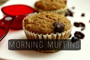 Morning Muffins