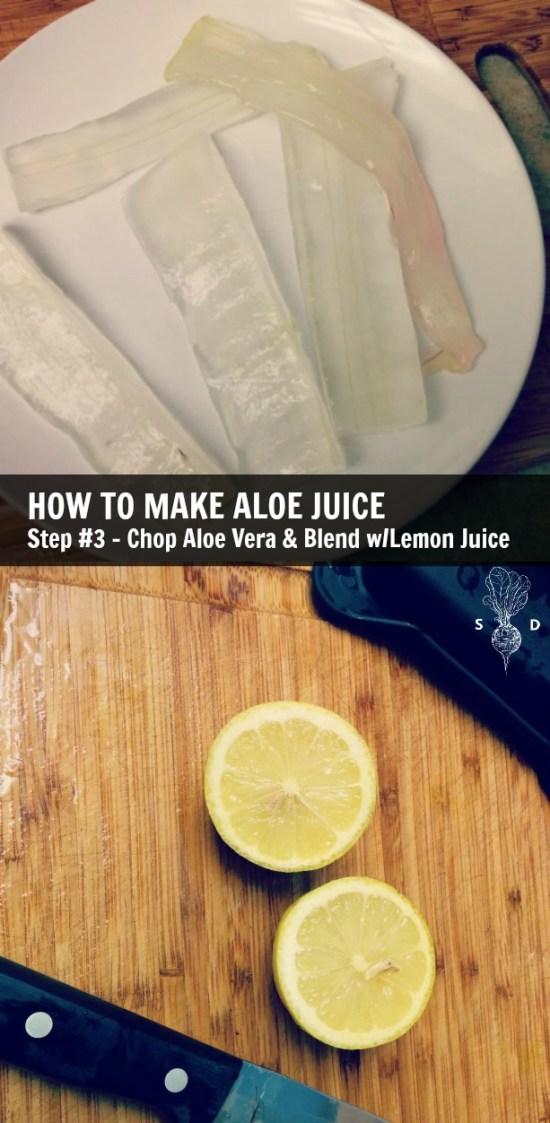 aloe-vera-recipe-chopped-lemon-juice