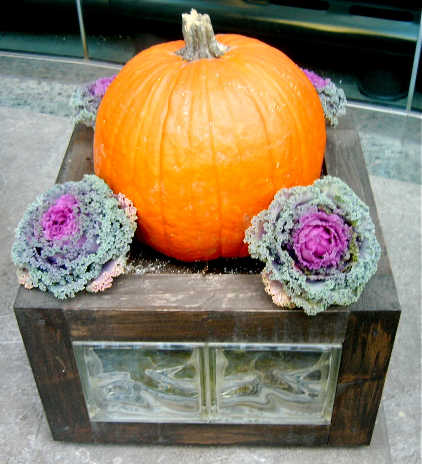 A seasonal planter in front of Le Germain
