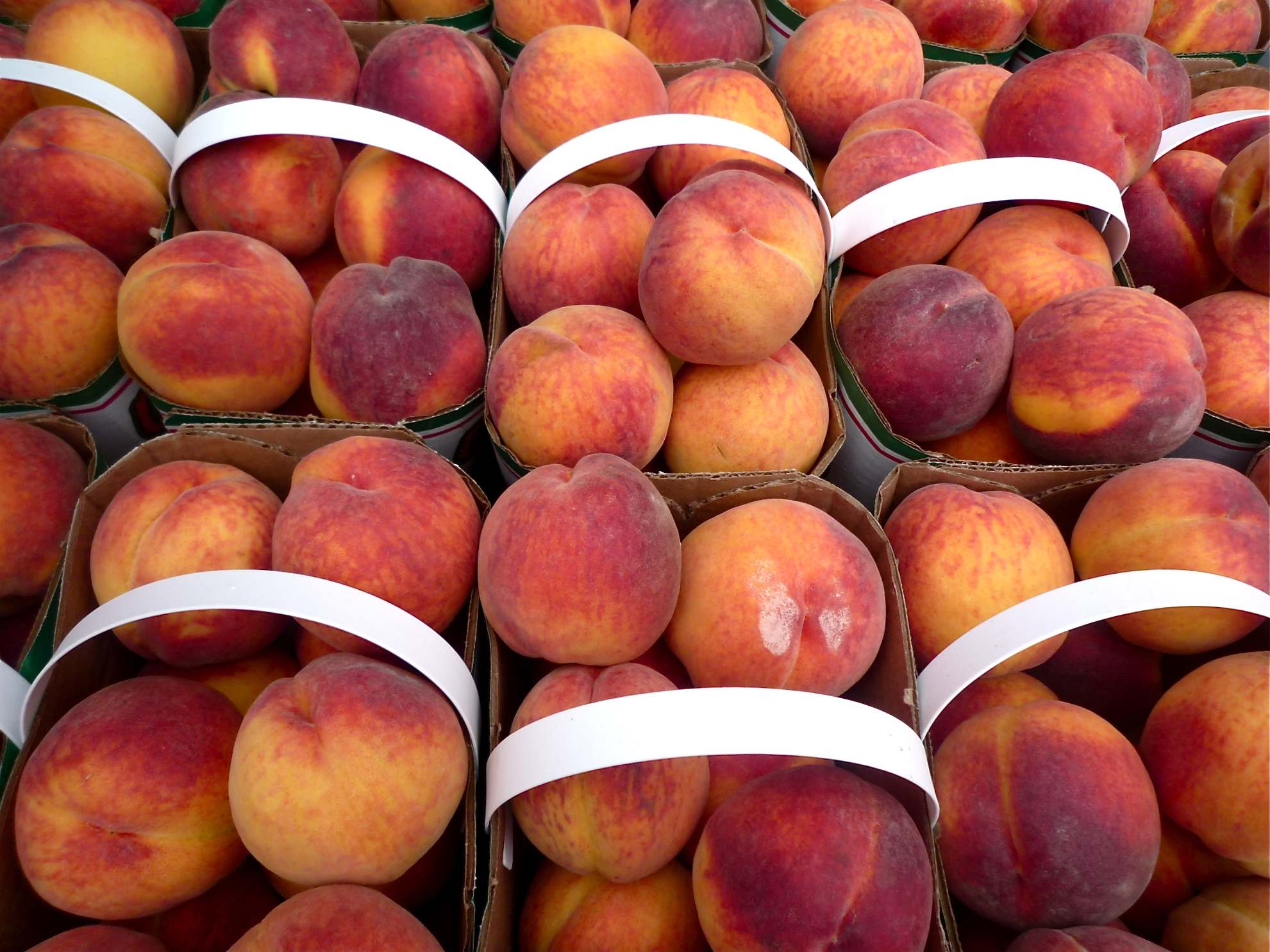 Baskets of peaches at the St. Lawrence Market, Toronto