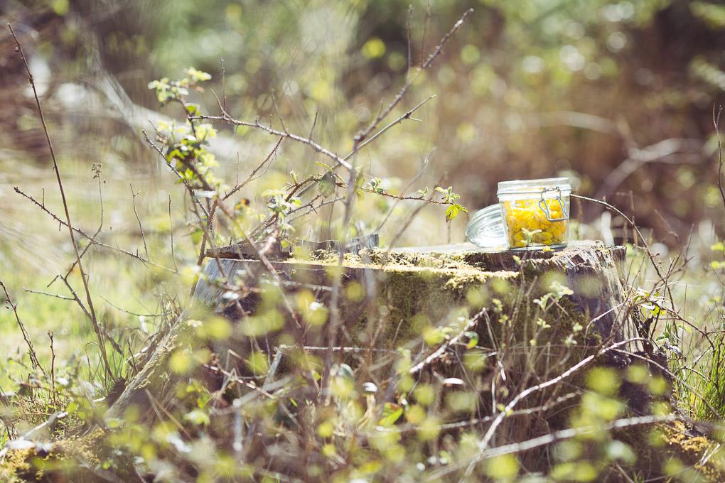 Gorse Flower and Raw Honey Mojito -- Storing gorse flowers in a Kilner jar | https://theseasonaltable.co.uk/drinks/gorse-flower-and-raw-honey-mojito/