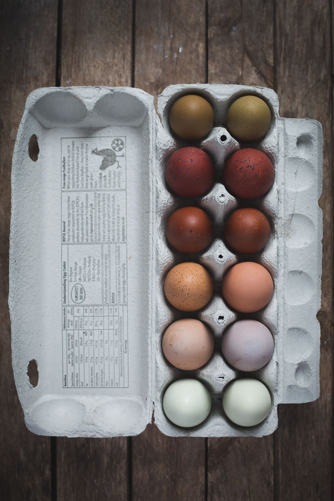 Chickens - Creating a Dual Purpose UK Easter Egger Flock – Part 1 -- Multi coloured chicken eggs   https://theseasonaltable.co.uk/smallholding/chickens-creating-a-dual-purpose-uk-easter-egger-flock-part-1