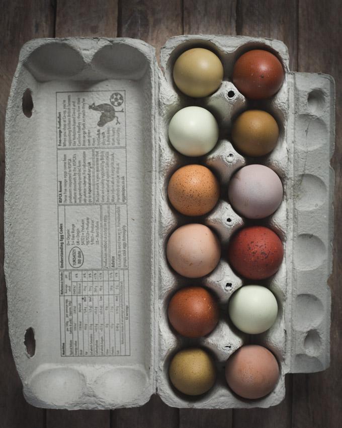 Chickens: Creating a Dual-Purpose UK Easter Egger Flock – Part 3 | multi-coloured eggs| https://theseasonaltable.co.uk/smallholding/chickens-creating-a-dual-purpose-uk-easter-egger-flock-part-3/