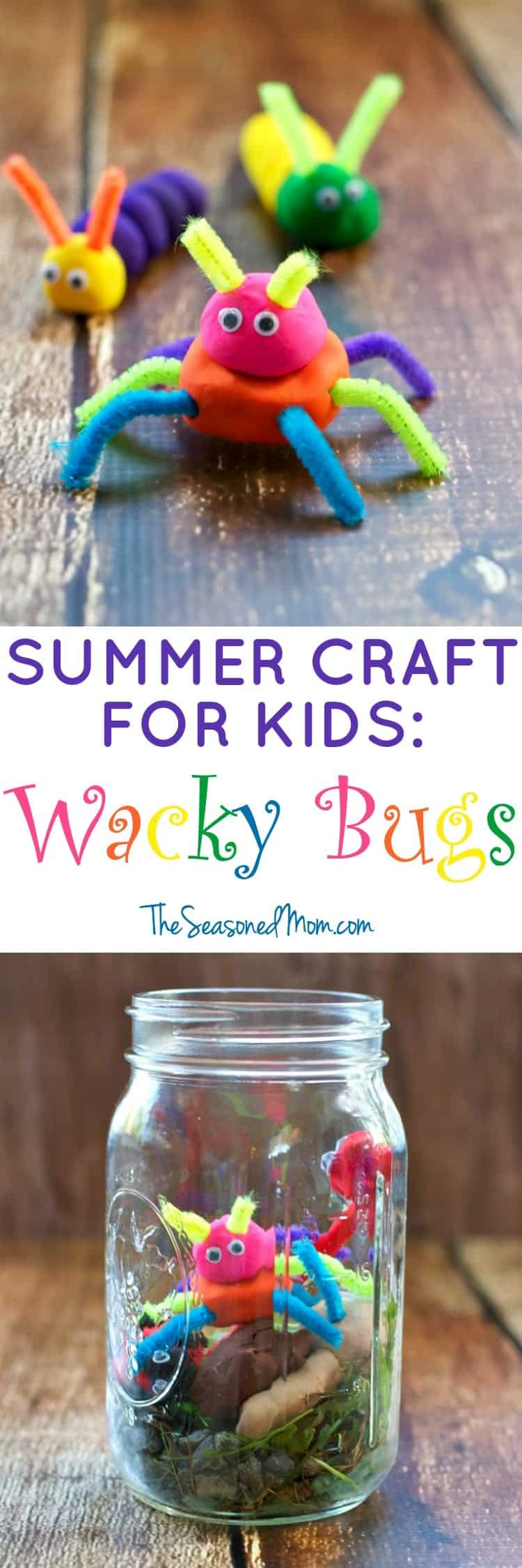 Summer Craft for Kids: Wacky Bugs - The Seasoned Mom