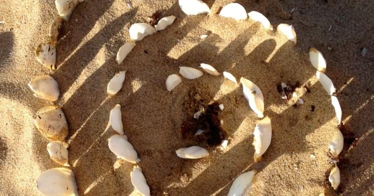 Goodbye Whitsundays (and goodbye comfort zone!)