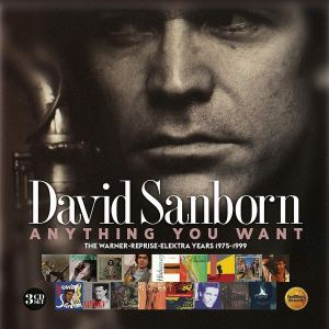 David Sanborn Anything You Want