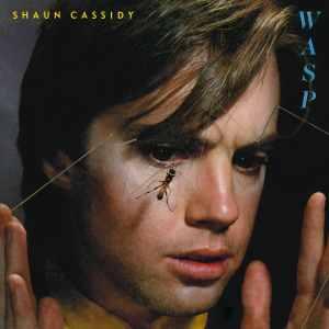 Shaun Cassidy Wasp