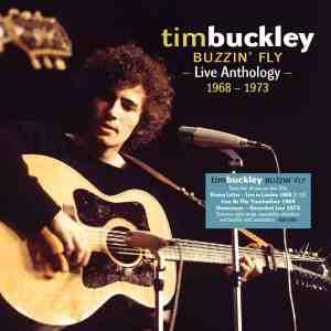 Tim Buckley Buzzin Fly