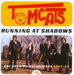 Tomcats Running at Shadows