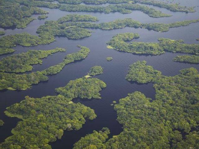 View over the Amazonia forest