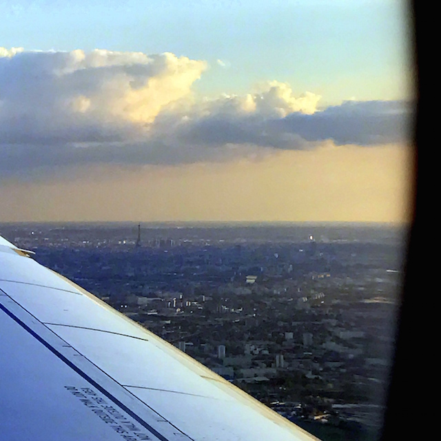 View of Paris from the airplane