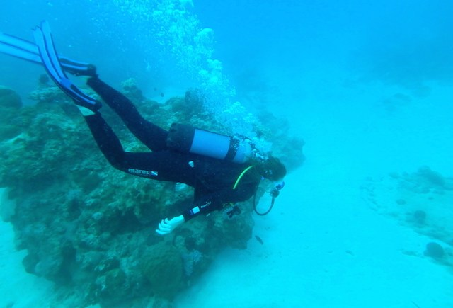 Scuba diving near Trou aux Biches in Mauritius