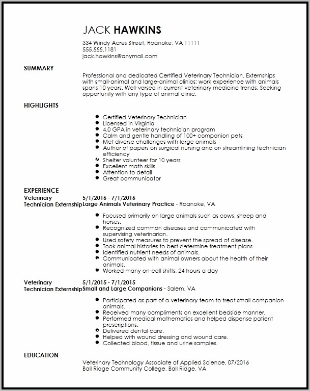 Free Resume Templates With Volunteer Experience
