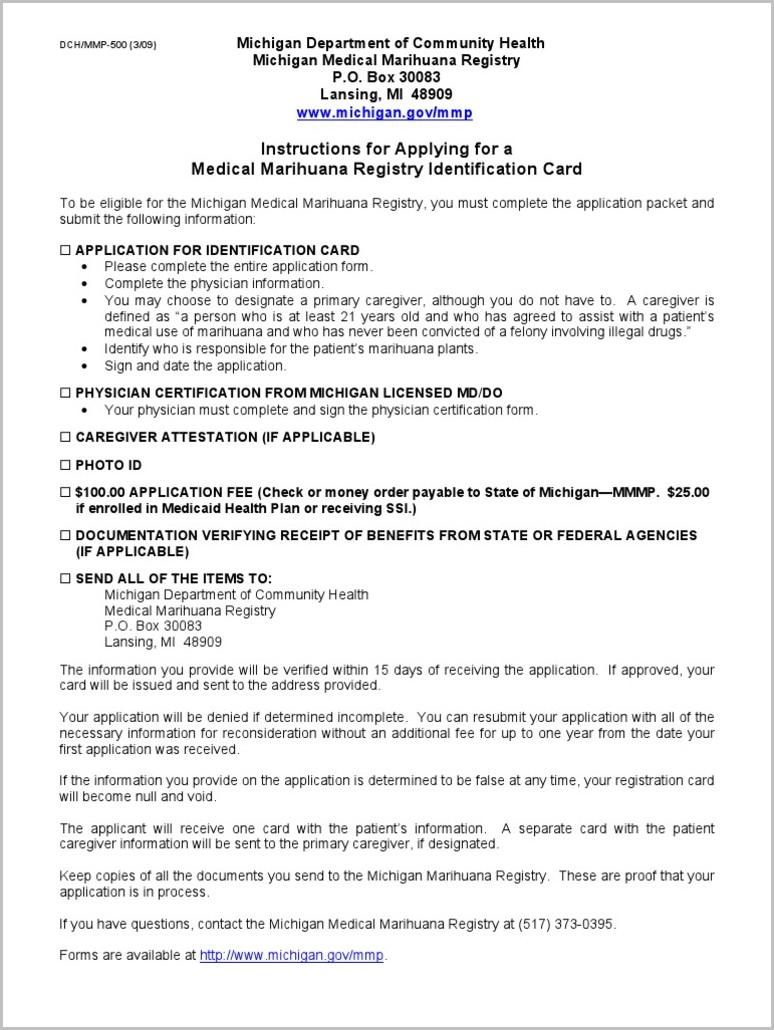 Medicaid Application Form Michigan