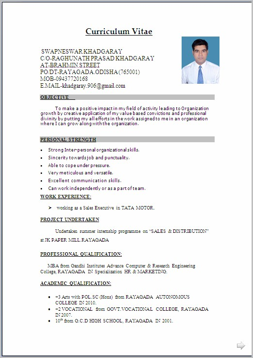 Resume Templates Word For Freshers
