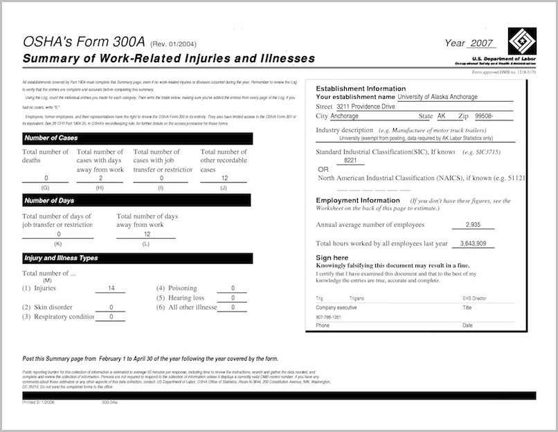 Sample Osha 300a Form