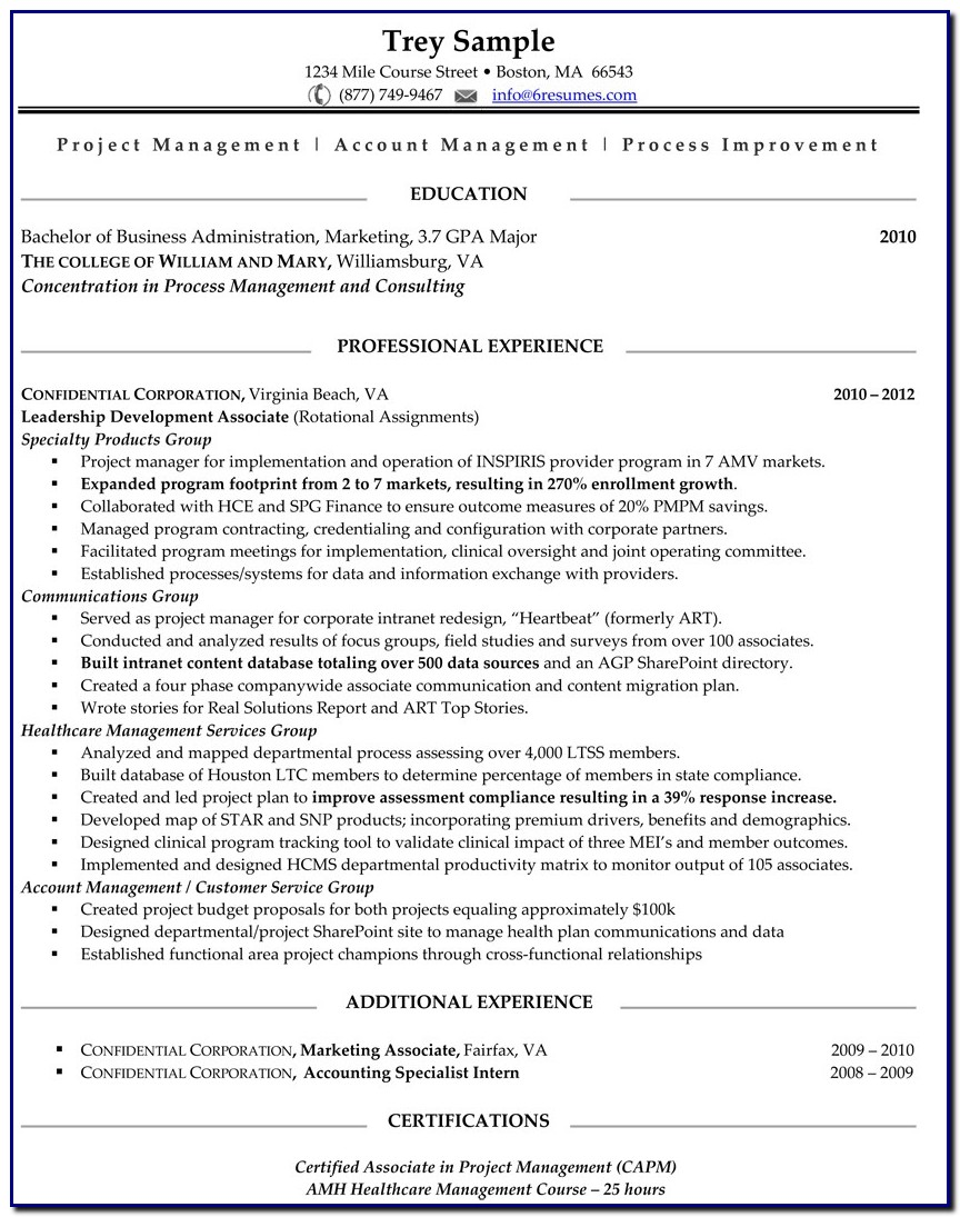 Professional 1 Resume Template