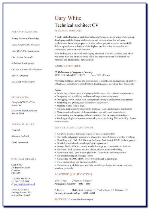 Professional Cv Template Architect