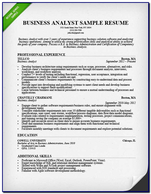 Professional Cv Template Business Analyst